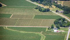 Aerial view of some of our agriculture